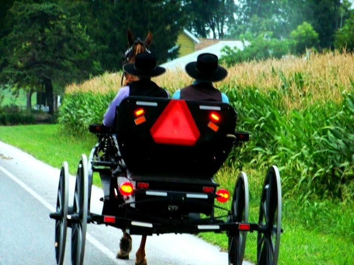 Amish BoysB