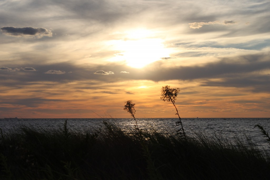 Cape May 2012 (14)