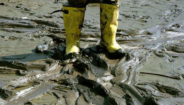 mud-616481_1280